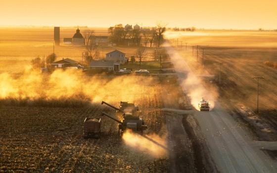 Harvesting corn at sunset on a farm near De Kalb, Illinois